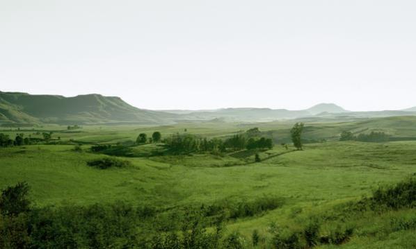 Landscape 1/006
